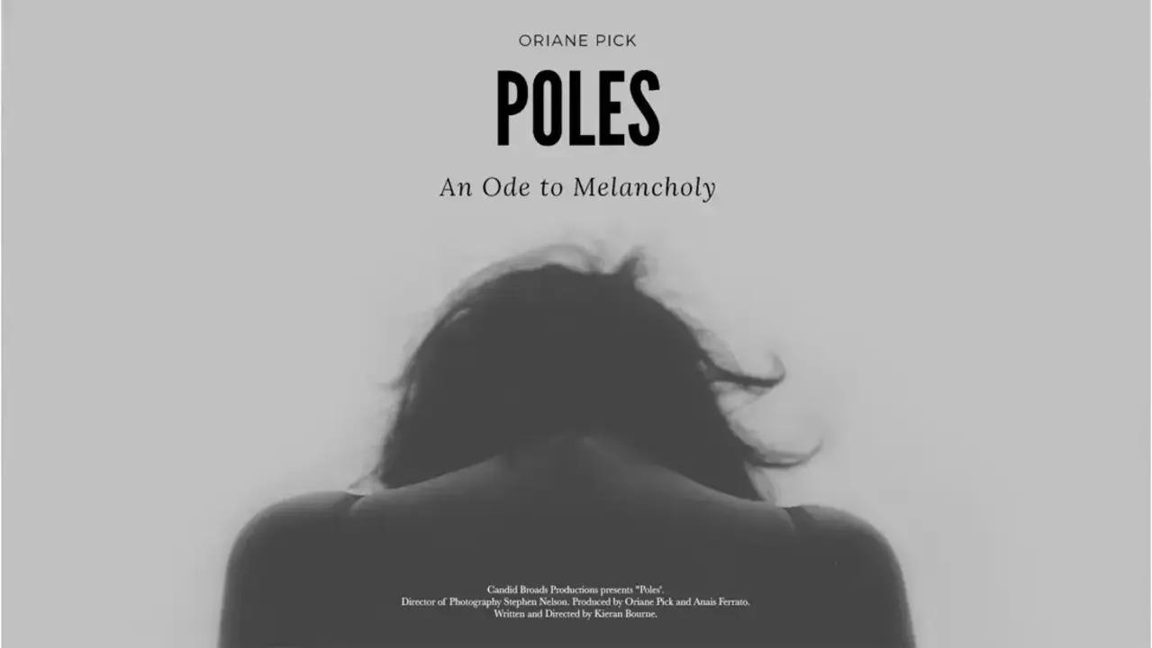 poles-_1_-_1_